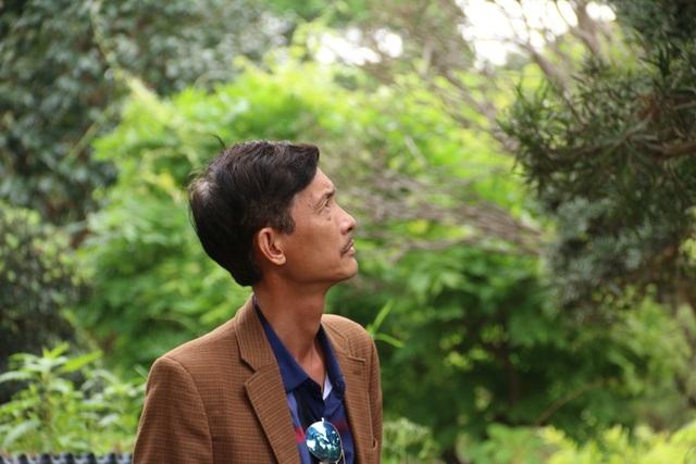 Theo ông Lành, người Nhật thích thích dáng cây tự nhiên hơn là uốn nắn nên những cây tùng la hán Nhật Bản hầu như đều có dáng tự nhiên. Cây thích nghi tốt với khí hậu Việt Nam và thường được trồng trong các sân vườn, biệt thự.