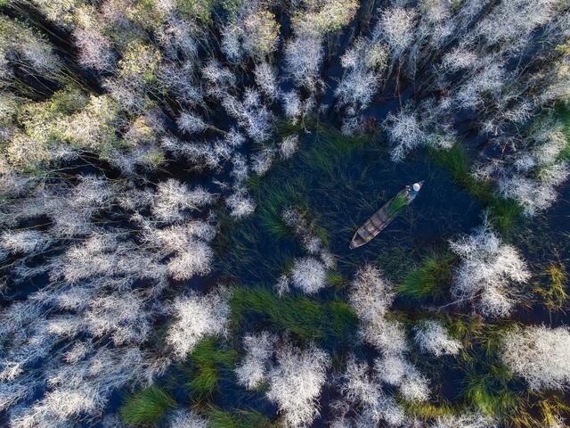 """Bức ảnh của tay máy Phạm Huy Trung đoạt giải khuyến khích ở giải mở - hạng mục ảnh du lịch; ở hạng mục quốc gia, bức ảnh này đoạt giải nhất trong số các bức ảnh do những tay máy người Việt gửi về. Tác giả ảnh chia sẻ: """"Tôi chụp ảnh này năm 2017 tại Đồng Tháp trong mùa nước nổi, tôi đã dùng 'drone' để thu lại được hình ảnh này""""."""