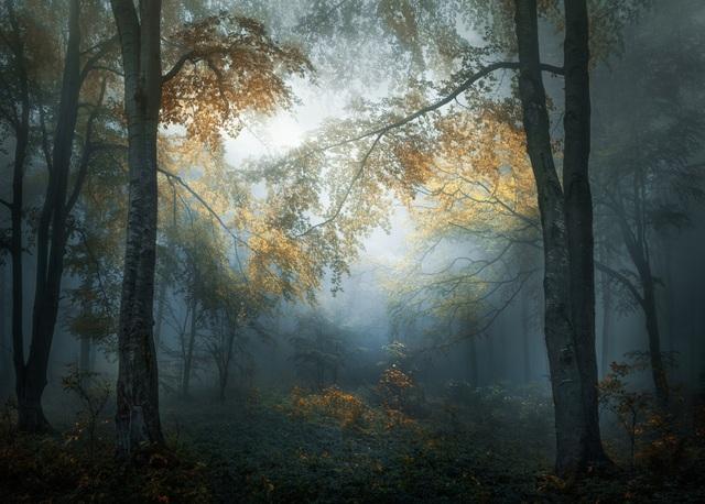 Giải mở - hạng mục ảnh Phong cảnh & Thiên nhiên - tác giả Veselin Atanasov (Bulgaria)