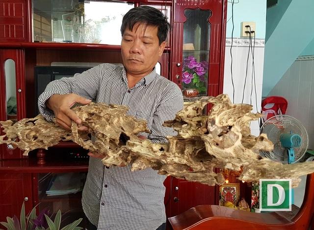 Khối trầm này nặng 1,1kg do kiến ăn vào thân cây dó bầu nên tạo trầm có hình thù ngoằn ngoèo vô cùng độc đáo, lạ mắt