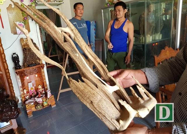 Thú chơi trầm cảnh ở Vạn Ninh (Khánh Hòa) nở rộ trong thời gian gần đây và nhiều mẫu trầm cảnh nhờ đó cũng tăng giá vùn vụt
