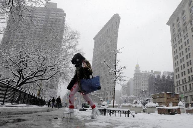 Các nhà khí tượng học cho biết tuyết rơi dày tới 45 cm dọc bờ biển phía đông Mỹ từ Philaphelphia tới New York. Ngay cả các khu vực trong đất liền như Ohio, Indiana và Kentucky cũng phải hứng chịu ảnh hưởng do tuyết rơi dày. Trong ảnh: Người đi bộ băng qua đường phủ đầy tuyết ở New York.