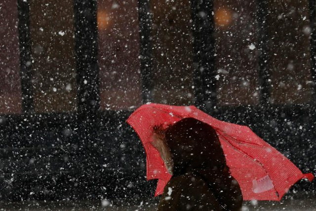 Một chiếc ô dường như không giúp người phụ nữ này cản nổi gió khi đi qua công viên Brooklyn.