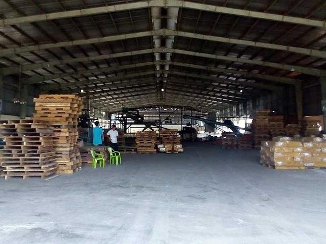 Nhà máy chế biến mủ cao su Đại Lộc ở huyện Tân Châu, Tây Ninh hiện nay do anh Thành Nguyễn gầy dựng, làm chủ sau khi rời biên chế nhà nước. Ảnh: H.MINH