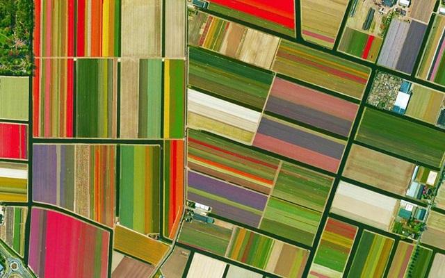 Ngỡ ngàng với những bức ảnh vệ tinh cực kỳ ấn tượng - 16