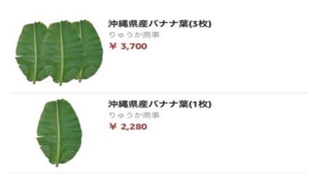 Trước đó lá chuối bán trên trang Amazon Nhật với giá 500.000 đồng/lá cũng khiến người Việt ngạc nhiên