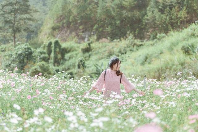 Cánh đồng hoa mới toanh ở Đà Lạt đẹp 'ngất ngây' đốn tim giới trẻ - 7