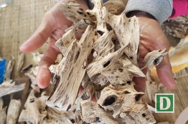 Trầm hương được cắt tỉa gọn gàng, trở thành thương phẩm được nhiều người ưa chuộng