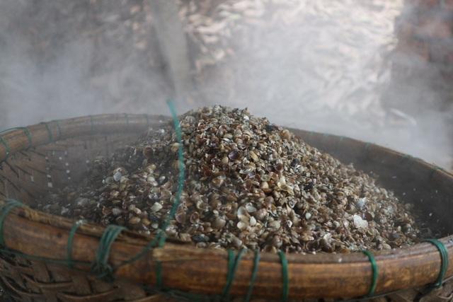 Vỏ hến được bán cho các lò nung vôi