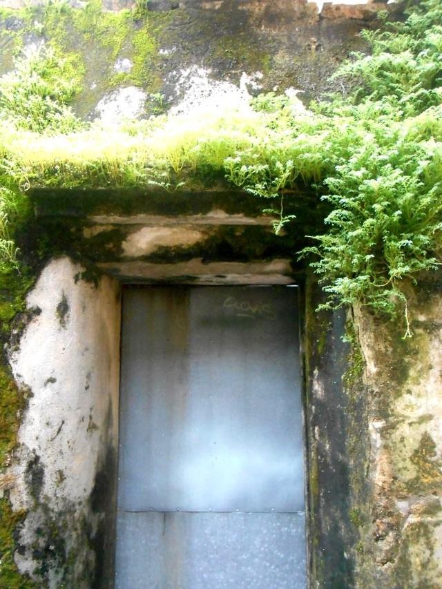 Các bức tường rêu phong gợi nhớ về miền ký ức xưa cũ