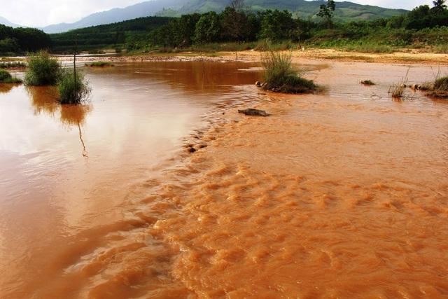Dòng sông Quế Phương đang bị ô nhiễm nặng nề