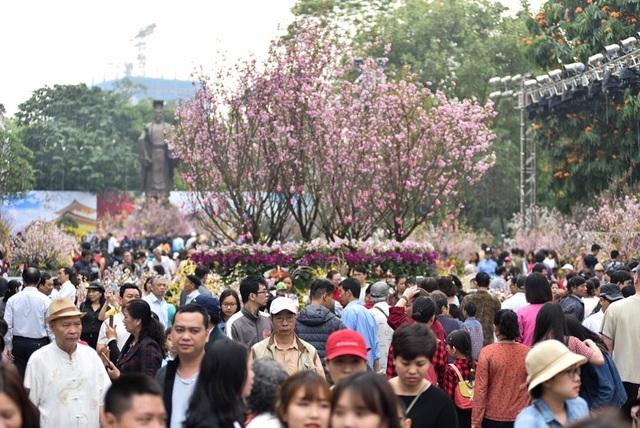 Nhân dịp kỉ niệm 45 năm thiết lập quan hệ ngoại giao Việt Nam - Nhật Bản (21/9/1973 - 21/9/2018), thành phố Hà Nội phối hợp cùng với Đại sứ quán Nhật Bản tại Việt Nam tổ chức trưng bày khoảng 50 cây, 10.000 cành hoa anh đào và một số những loài hoa đặc trưng của Việt Nam và Nhật Bản tại khu vực tượng đài Lý Thái Tổ, Hà Nội. Sáng 24/3, rất đông người dân đã tới tham dự.