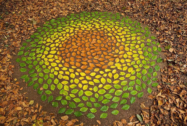 Tĩnh lại để chiêm ngưỡng những vòng tròn đá cuội tĩnh lặng - 3