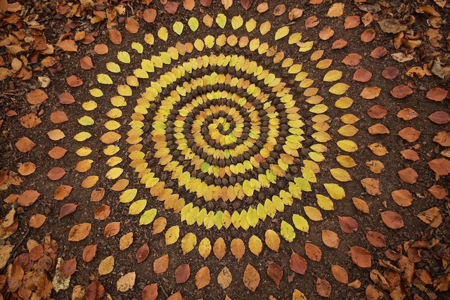 Tĩnh lại để chiêm ngưỡng những vòng tròn đá cuội tĩnh lặng - 4