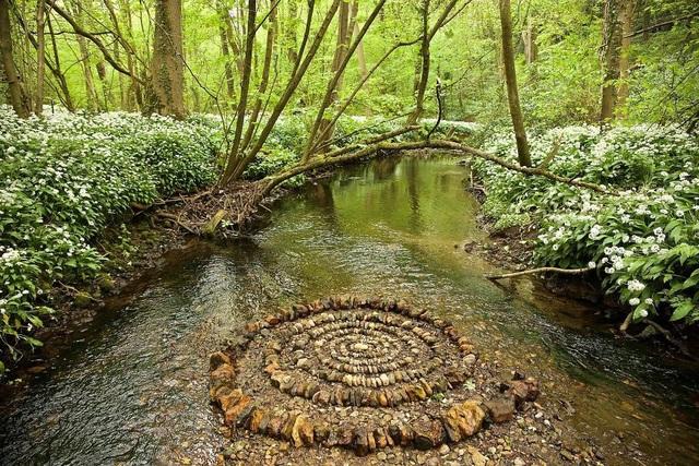 Tĩnh lại để chiêm ngưỡng những vòng tròn đá cuội tĩnh lặng - 16