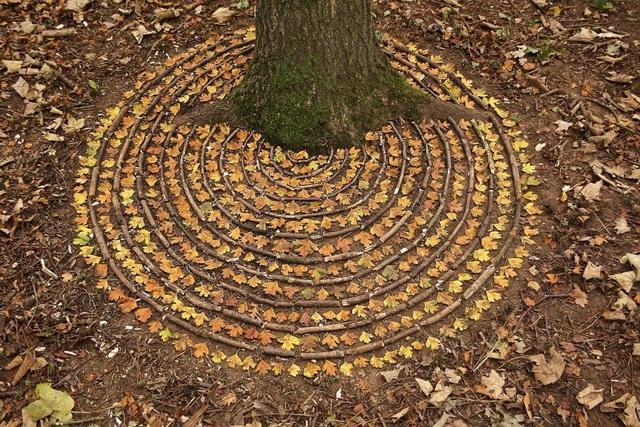 Tĩnh lại để chiêm ngưỡng những vòng tròn đá cuội tĩnh lặng - 20