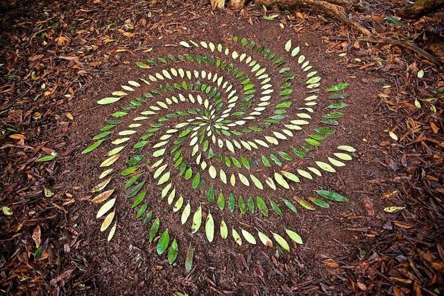 Tĩnh lại để chiêm ngưỡng những vòng tròn đá cuội tĩnh lặng - 22