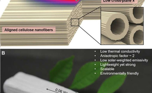 Gỗ nano có thể giảm phát thải cacbon - 1