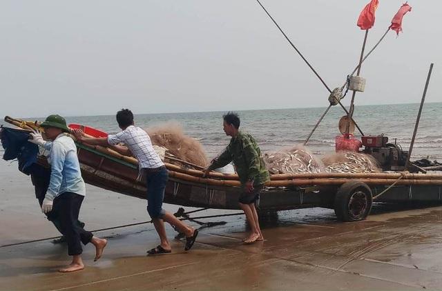 Mỗi chuyến ra khơi trở về, các thuyền bè đều đầy ắp những mẻ cá trích. Sản lượng cá đánh bắt được nhiều hơn so với mọi năm, đem lại sự hứng khởi cho bà con ngư dân trong những chuyến ra khơi.