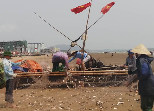 Không khí gỡ lưới và cảnh mua bán trên bãi biển mỗi buổi sáng sớm của bà con ngư dân địa phương thực sự như ngày hội.