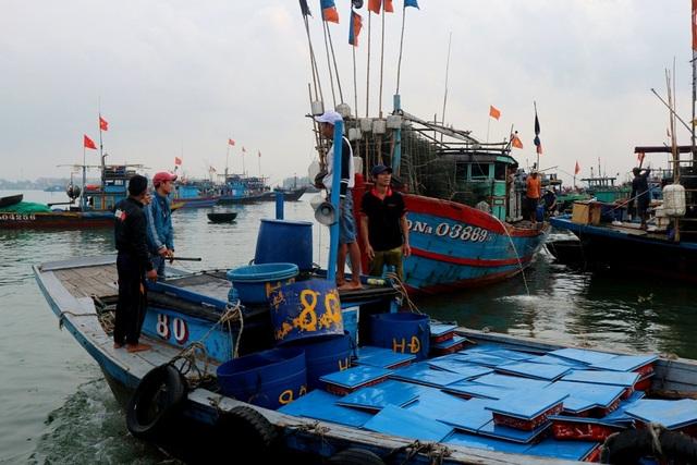 Cá nục đầy khoang thuyền đã được đặt sẵn vào các khay đang cập bến để vận chuyển lên bờ