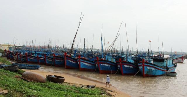 Từ năm 2010 đến nay, tỉnh Phú Yên có 10 vụ với 11 tàu cá và 111 lao động bị bắt giữ ở vùng biển nước ngoài.