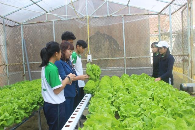 Cô Phạm Thị Hồng đang hướng dẫn các em về kỹ thuật chăm sóc cây rau xà lách