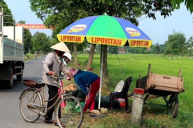Nhiều hộ trồng dưa nhiều thì để dành ra đường lộ ngồi bán cho khách du lịch với giá 7.000-8.000 đồng/kg