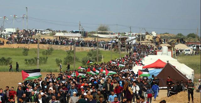 Tổng cộng 5 lán trại vừa được người biểu tình Palestine dựng lên. Ảnh: AP