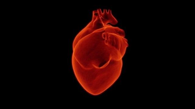 Nghiên cứu ngăn ngừa và điều trị hội chứng ngưng tim đột ngột dựa vào giới tính - 1