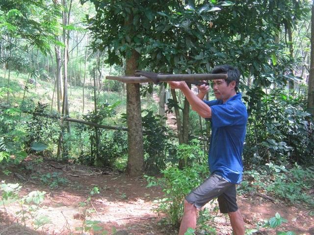 Dù không còn săn bắn nhưng người Dao ở đây vẫn làm nỏ, và sử dụng như một bản năng tự vệ.