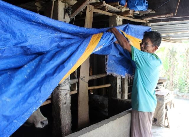 Nhiều hộ dân ở đây dùng bạt nhựa bao quanh chuồng để phòng chống dịch