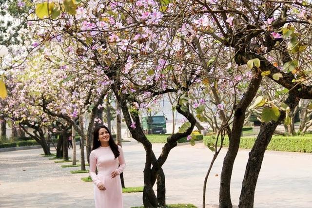 """Trong tiếng Thái, """"Ban"""" có nghĩa là """"ngọt"""", """"hoa ban"""" là """"hoa ngọt"""", nở rộ đẹp nhất vào cuối tháng 2, đầu tháng 3."""