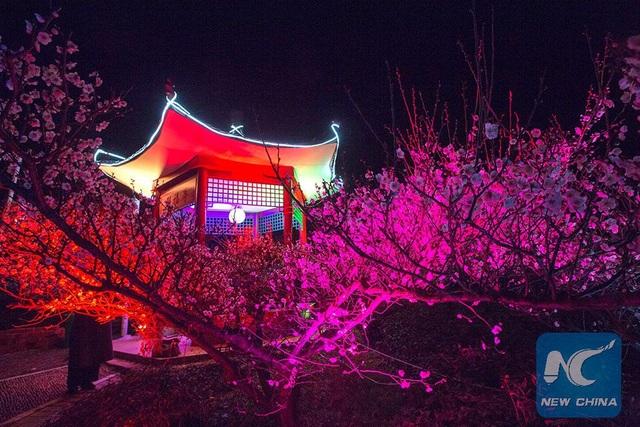 Mãn nhãn mùa hoa xuân tuyệt đẹp ở Trung Quốc - 3