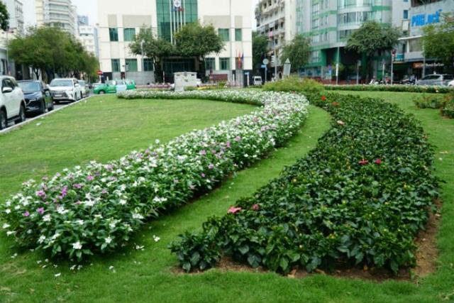 Khuôn viên rộng 800 m2 được cải tạo, thiết kế với mảng cỏ xanh, đan xen vào đó là những rãnh hoa nhiều màu sắc, cuốn hút.