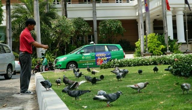 Chị Hoàng Mộng Điệp (43 tuổi) ngồi cà phê đối diện công viên cho biết: từ khi có công viên xanh, bộ mặt khu vực này thay đổi hẳn. Không còn cảnh hỗn loạn mỗi khi xe ô tô chạy về đây tìm chỗ đậu. (Trong ảnh, một người dân đang cho đàn bồ câu ăn)