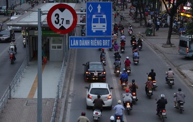 Làn đường BRT cũng thường xuyên bị xe con xâm chiếm.