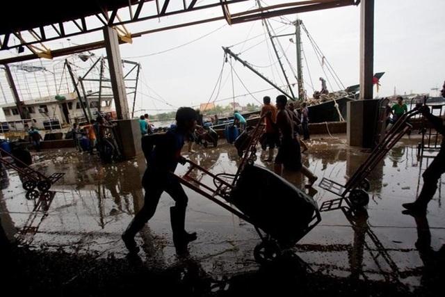 Ngư dân tại một chợ cá ở tỉnh Samut Sakhon, phía tây Bangkok. (Nguồn: AP)