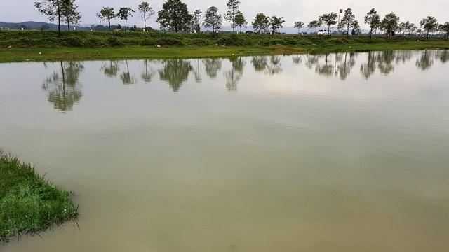 Dù chỗ cạn nhất chúng tôi đưa sào chọc xuống cũng không có lấy một cây sen, chưa nói đến những chỗ nước sâu 2-3m. Mà nhường lại cho dự án trên giấy này là việc xã cho thuê nuôi cá?.