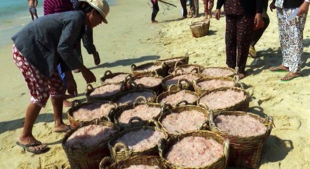 Mỗi đêm ngư dân khai thác từ 120  đến 150 giỏ ruốc
