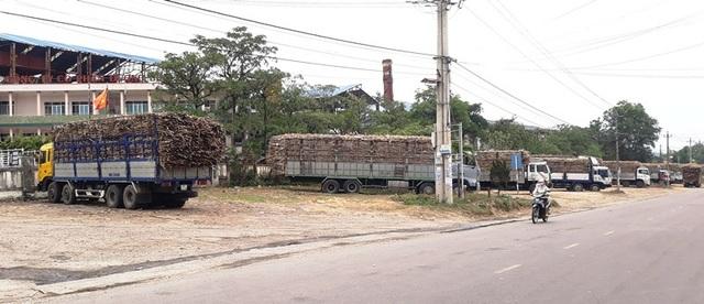 Công ty CP Đường Bình Định hứa trả lương tháng 3 cho công nhân.