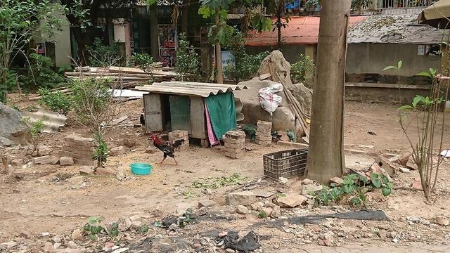 Nhiều người dân sinh sống trong khu vực bức xúc vì không có chỗ đi bộ, trẻ em vui chơi. Ngoài ra, cảnh quan môi trường nơi sinh sống cũng bị ảnh hưởng nghiêm trọng.
