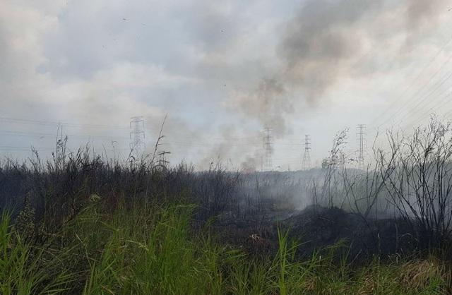 Đám cháy phát sinh ở bãi cỏ hoang rộng hàng chục ngàn m2