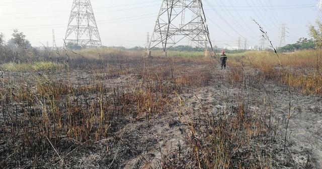 Hàng ngàn m2 bãi cỏ bị thiêu rụi, rất may là đường dây 500kv an toàn