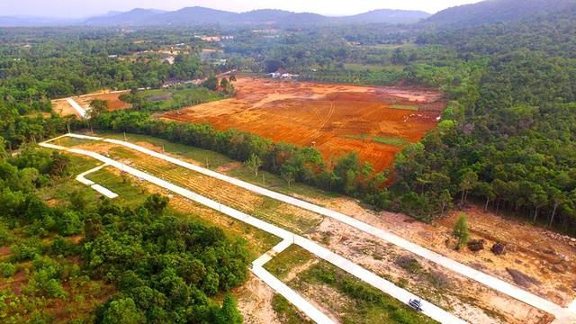 Hàng chục ha đất nông nghiệp đang bị xẻ thịt để phân lô, bán nền tại xã Cửa Dương, huyện Phú Quốc.