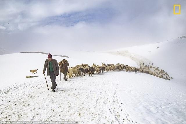 Những bức ảnh tuyệt đẹp trong giải thưởng ảnh du lịch của National Geographic 2018 - 5