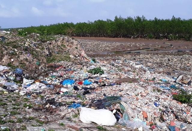 """Bờ biển qua địa bàn xã Đa Lộc, huyện Hậu Lộc có chiều dài hơn 5km với một dải rừng phòng hộ ngoài chức năng vốn có là chắn sóng, ngăn mặn...nay lại thêm """"chức năng"""" ngăn rác thải."""