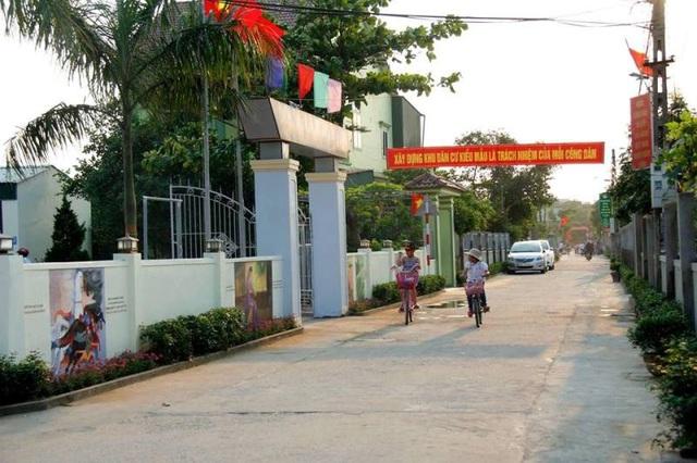 Độc đáo con đường bích họa trên quê hương Đại thi hào Nguyễn Du - 6