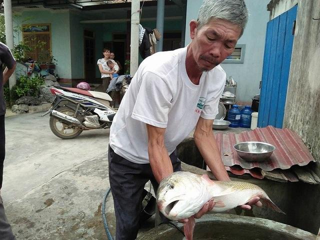 Ông Lê Thanh Quy và con cá nghi là sủ vàng quý hiếm