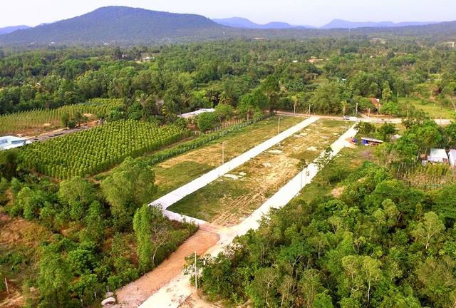 Những dự án phân lô trên đất nông nghiệp đang được rao bán rầm rộ.